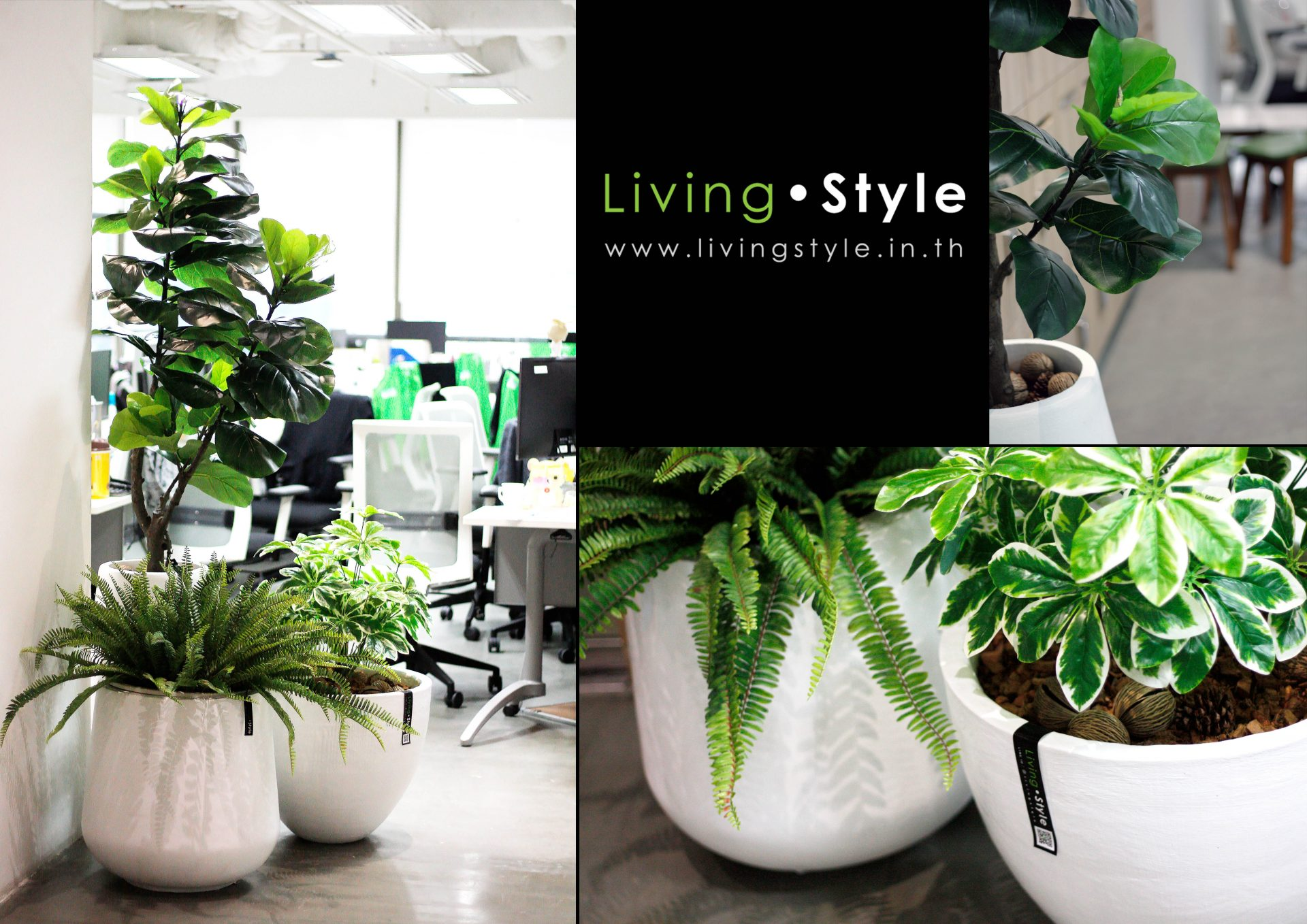Livingstyle 016 catalog