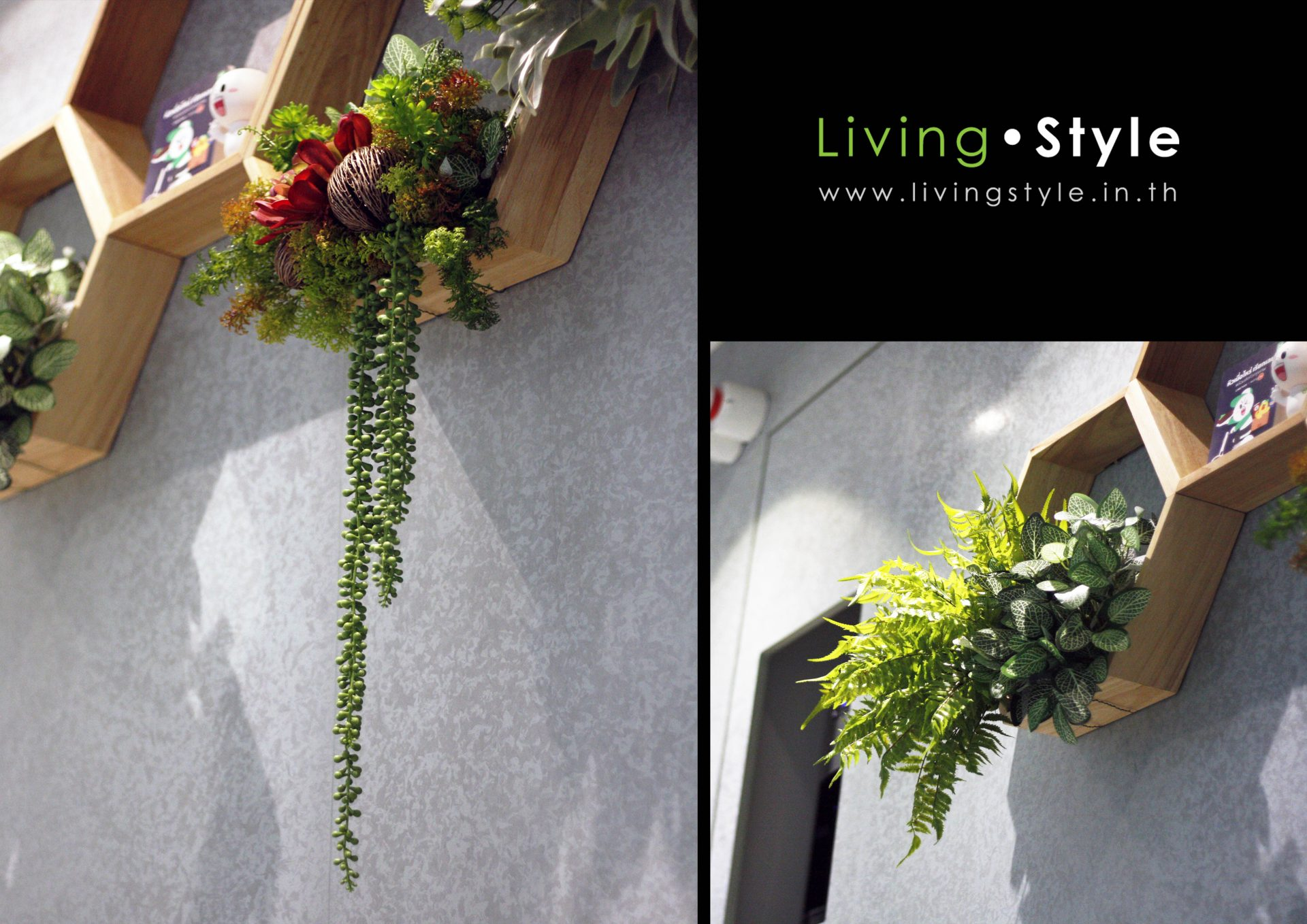 Livingstyle 018-1 catalog