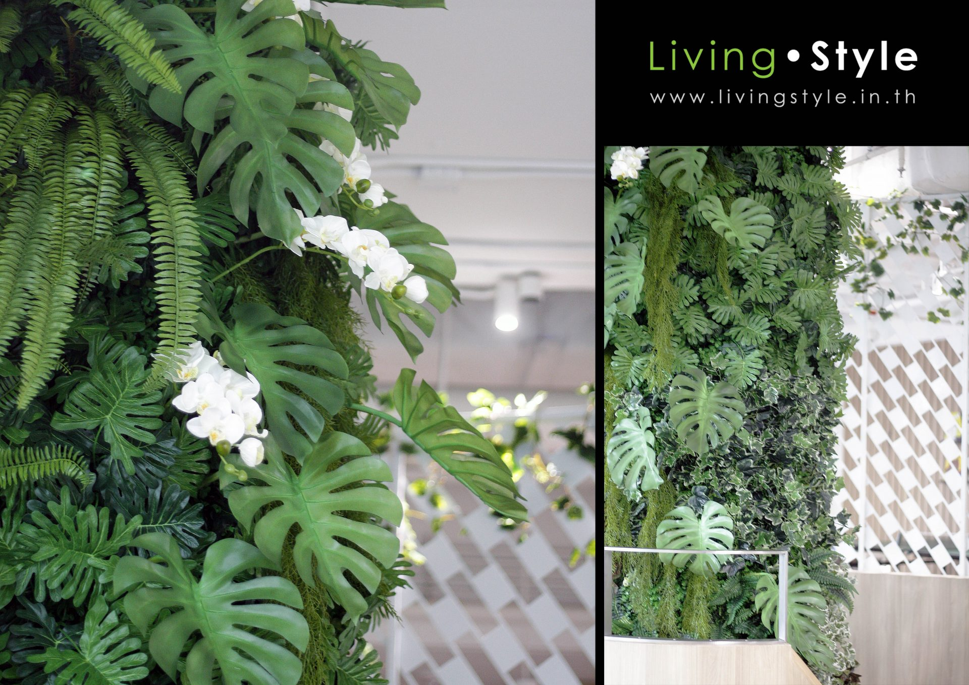 Livingstyle 020-1 catalog