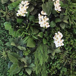 สวนแนวตั้ง Type C