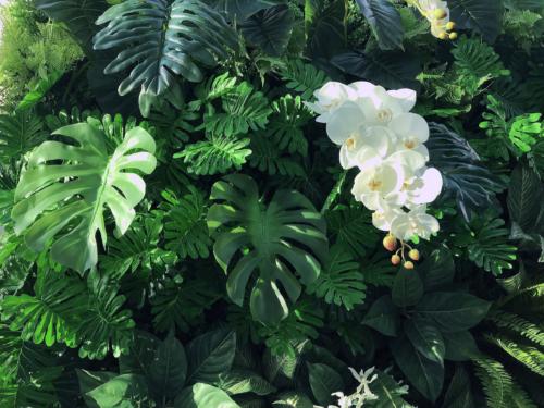 TYPE B vertical garden 8500