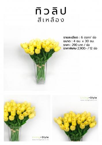 C ทิวลิป เหลือง